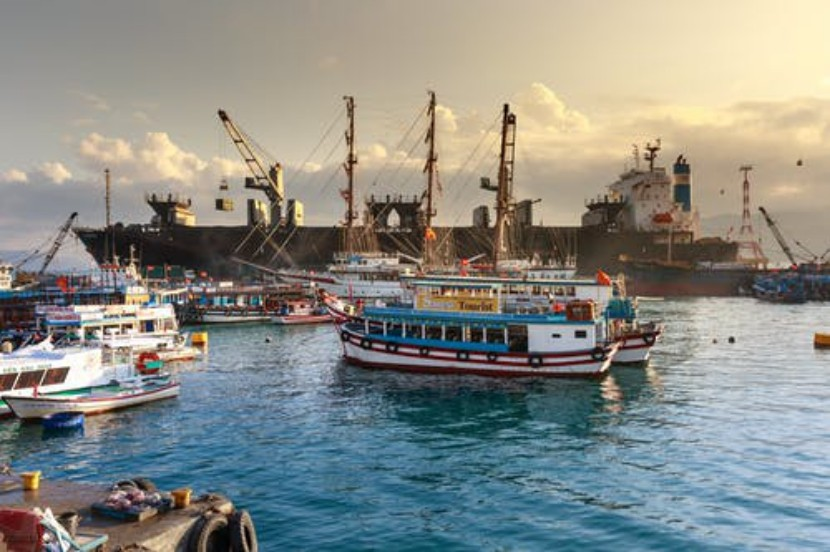 尽管面临Covid的挑战,中国港口仍实现了创纪录的增长